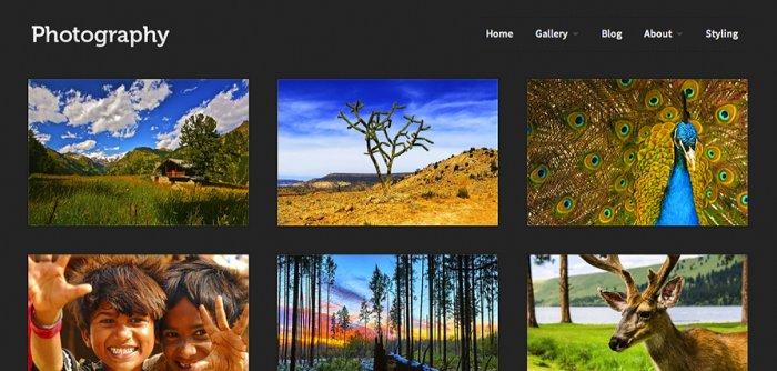 photography-wordpress-theme