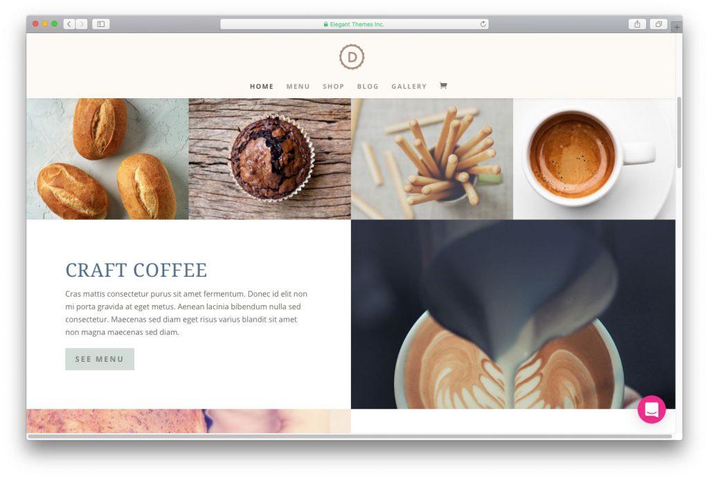 Divi-mobile-friendly-WordPress-themes