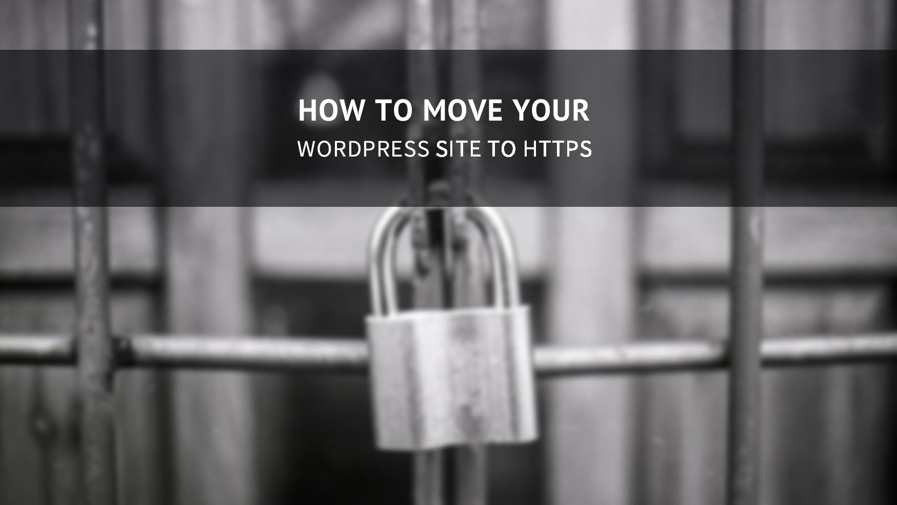 move-your-wordpress-site-to-https2